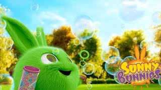 Download Cartoons for Children | SUNNY BUNNIES - BLOWING BUBBLES | Funny Cartoons For Children Video