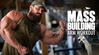Download Mass Building Arm Workout Video