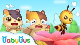 Download Baby Kitten, Be Careful Of Little Honeybee | Kids Safety Tips | Play Safe Song | Kids Song | BabyBus Video