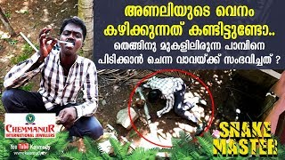 Download See what happens to Vava who climbs up a coconut tree to catch snake | Snakemaster | Latest Episode Video