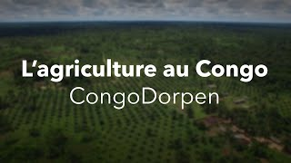 Download L'agriculture en RDC Video