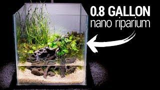 Download Making a 0.8 Gallon NANO RIPARIUM Video