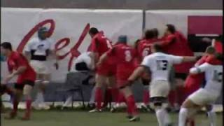 Download Romanian rugby players in massive fight Video