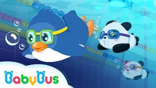 Download Baby Panda Sports - Swimming | Animation For Babies | BabyBus Video