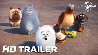 Download La Vida Secreta de tus Mascotas - Trailer 2 (Universal Pictures) [HD] Video
