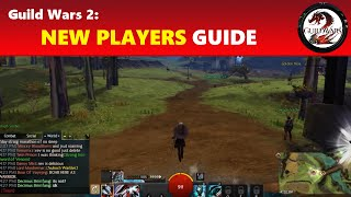 Download Guild Wars 2: New Players Beginners' Guide │ Playing the Game & Getting to Level 80 Video