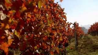 Download Dream of Italy 1: Full Umbria Episode Video