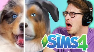 Download Keith Controls His Friends' Pets • The Sims 4 Cats & Dogs Video