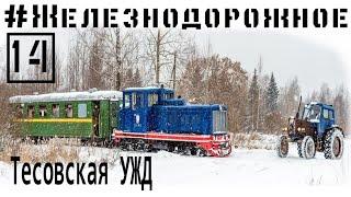 Download Катаемся по тесовсовской узкоколейке на тепловозе ТУ4, с вагонами ПВ40, #Железнодорожное - 14 серия Video