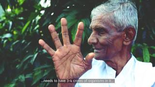 Download A Beautiful System: Narayan Reddy on soil carbon Video
