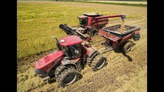 Download Louisiana Rice Harvest 2017 Video