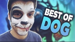 Download Best of TL Dog - Hearthstone Funny & Lucky Moments Video