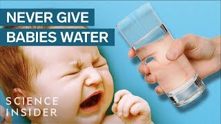 Download Why Babies Can't Drink Water Video