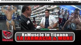 Download Dave Palumbo Goes To La Farmacia In Tijuana! Video