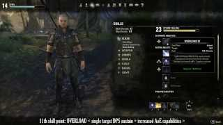 Download ESO - Sorcerer builds: all you need to know to get you started... Video