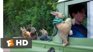 Download Peter Rabbit (2018) - Wet Willy Rescue (4/10) | Movieclips Video