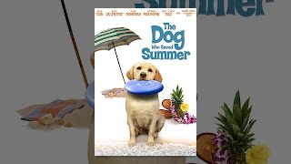 Download The Dog Who Saved Summer Video