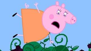 Download Peppa Pig Nederlands Compilatie Nieuwe Afleveringen 💛 De Braamstruik | Tekenfilm | Peppa de Big Video