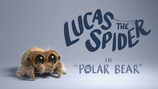 Download Lucas the Spider - Polar Bear Video