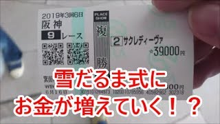 Download 【競馬に人生賭けた】コロガシ大作戦2019編 Video