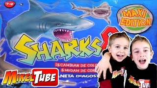 Download Unboxing SHARKS & Co. Tiburón Juguete que cambia de color o brilla en la oscuridad Video