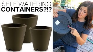 Download SELF WATERING CONTAINERS!?! Video