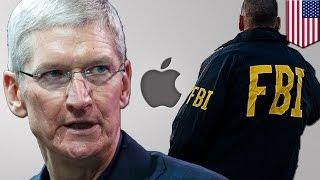 Download Tim Cook i Apple nie da FBI dostępu do ich baz danych Video