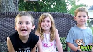 Download BEST OF KIDS'S SURPRISE REACTIONS to Pregnancy Announcement Compilation Video