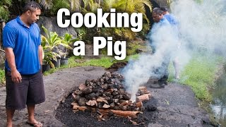 Download Polynesian Cultural Center Luau: How to Cook a Pig in an Imu Video