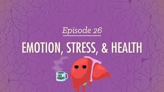 Download Emotion, Stress and Health: Crash Course Psychology #26 Video