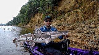 Download RIO DOS MONSTROS, com direito a receita de peixe assado no barranco! Pescaria. Video