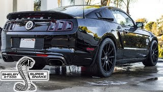 Download Why I Bought The 1000HP Shelby GT500 Super Snake ! Video