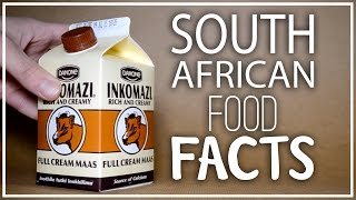 Download 6 Awesome South African Food Fact Video