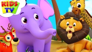 Download Zoo Song | The Supremes Cartoons | Kindergarten Nursery Rhymes For Toddlers | Kids Videos Video