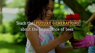 Download Imagine a world without bees... Video