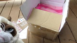 Download Hobo Box from Fishie Video