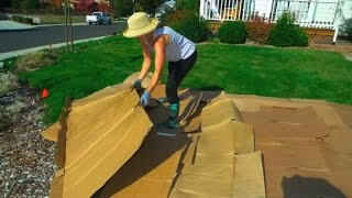 Download Convert Your Lawn by Sheet Mulching Video