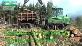 Download driving a forwarder Video