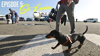 Download Episode 5: Crusoe Goes to St. Lucia (Part 1) Video