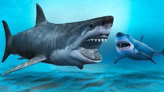 Download A Shark Scarier Than the Megalodon Could Exist Video