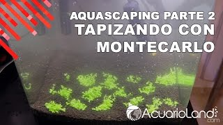 Download Aquascaping 19 Litros Parte 2 || ACUARIOLAND Video