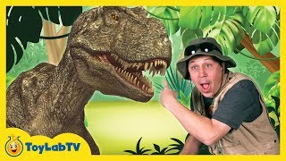 Download T-Rex Giant Life Size Dinosaur & Park Ranger Aaron with Dinosaur Surprise Toys Opening Video