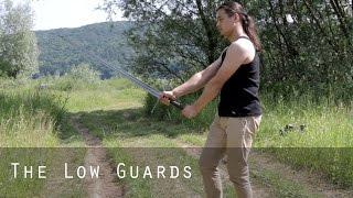 Download Sword's Path   The Basics - The Low Guards Video