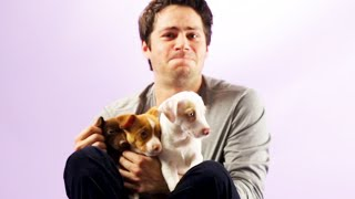 Download Dylan O'Brien From The Maze Runner Plays With Puppies Video