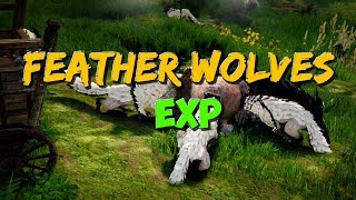Download Feather Wolves | EXP + some Money Income | Black Desert Online. Video