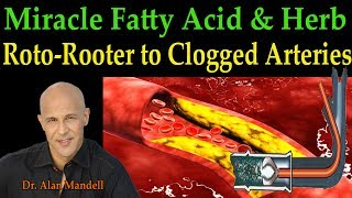 Download The Roto-Rooter to Clogged Arteries - The Miracle Fatty Acid & Herb (Dr. Alan Mandell, D.C.) Video