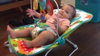 Download Fisher Price Animal Party Bouncer Review Video