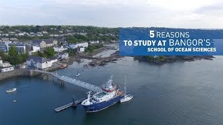 Download 5 reasons to study at Bangor University's School of Ocean Sciences Video