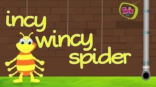 Download Incy Wincy Spider Nursery Rhyme with English Lyrics | Animation Nursery Rhymes for Chiildren Video