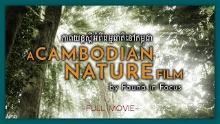 Download A Cambodian Nature Film: The Kingdom of Nature (FULL MOVIE) Video